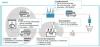 Les étapes clés des dispositifs de réemploi
